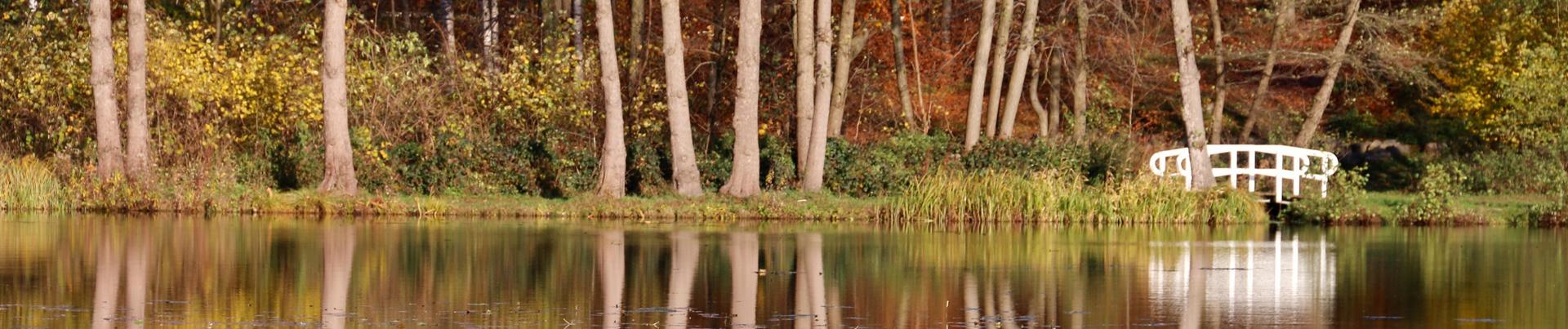 Startseite Herbst1
