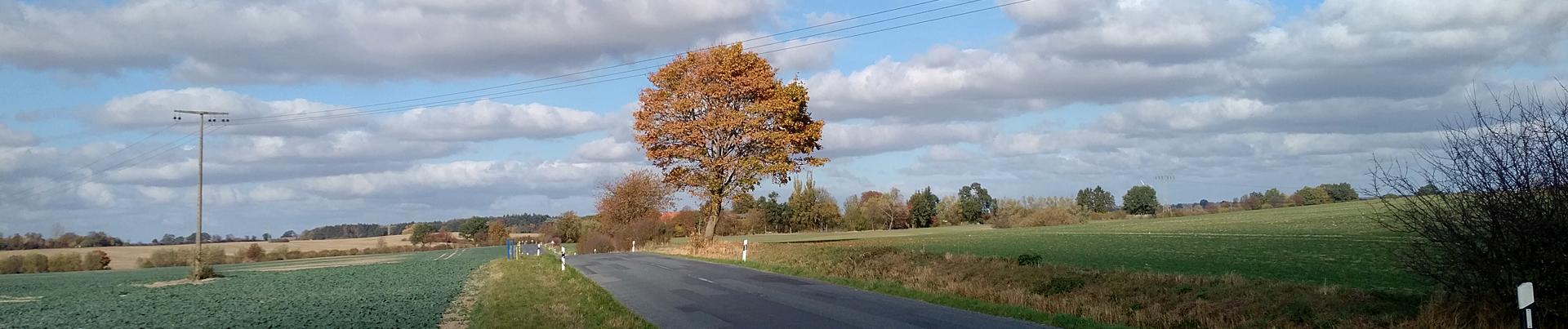 Startseite Herbst2
