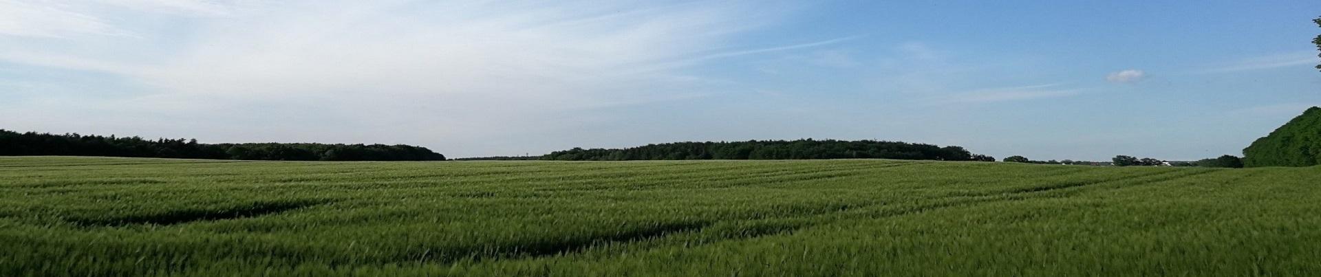 Amt-Gemeinden2